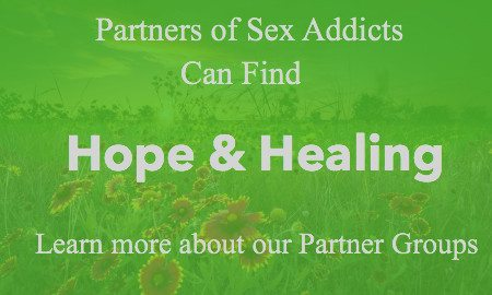 partners of sex addicts groups