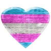 Transgender Care and Trauma