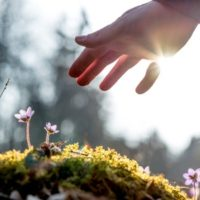 Titrating Experiences for Emotional Healing